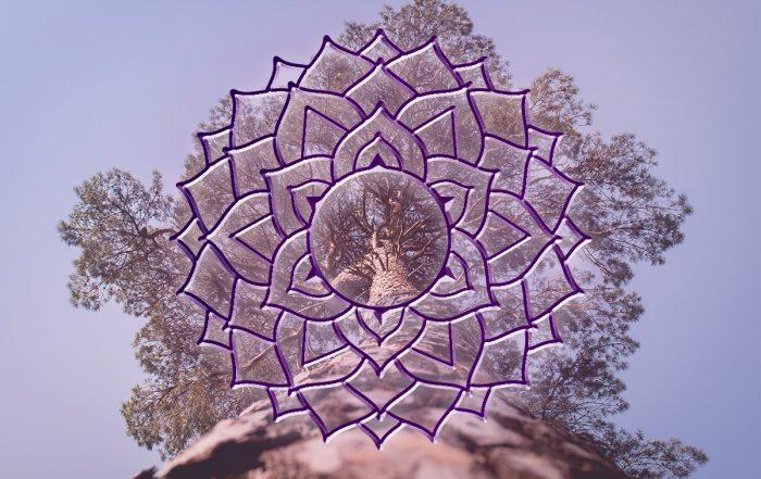 Kruinchakra - Verbind je met het Universum